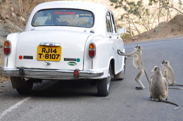 Our former Ambassador car